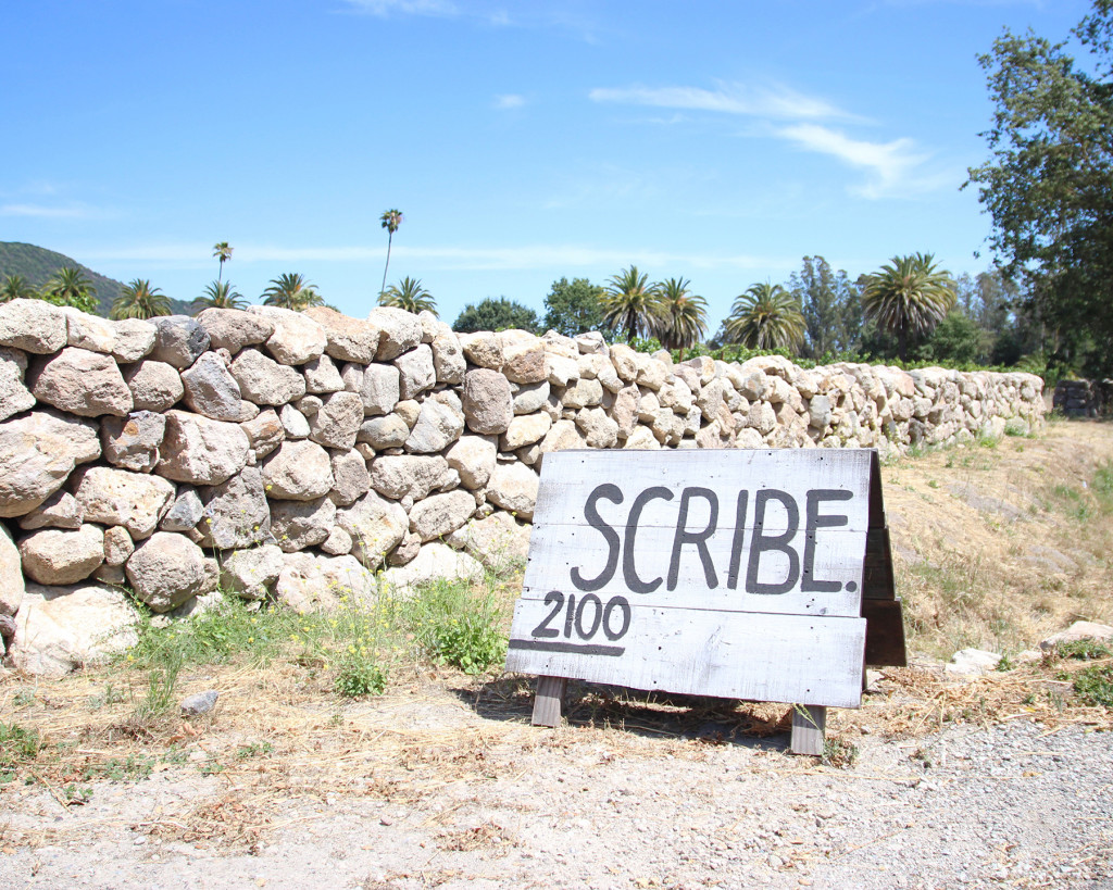 SCRIBE_2